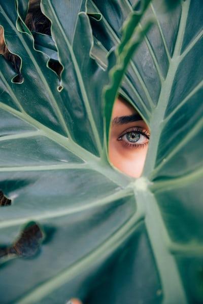 Комбинации от нутриенти при проблеми с очите