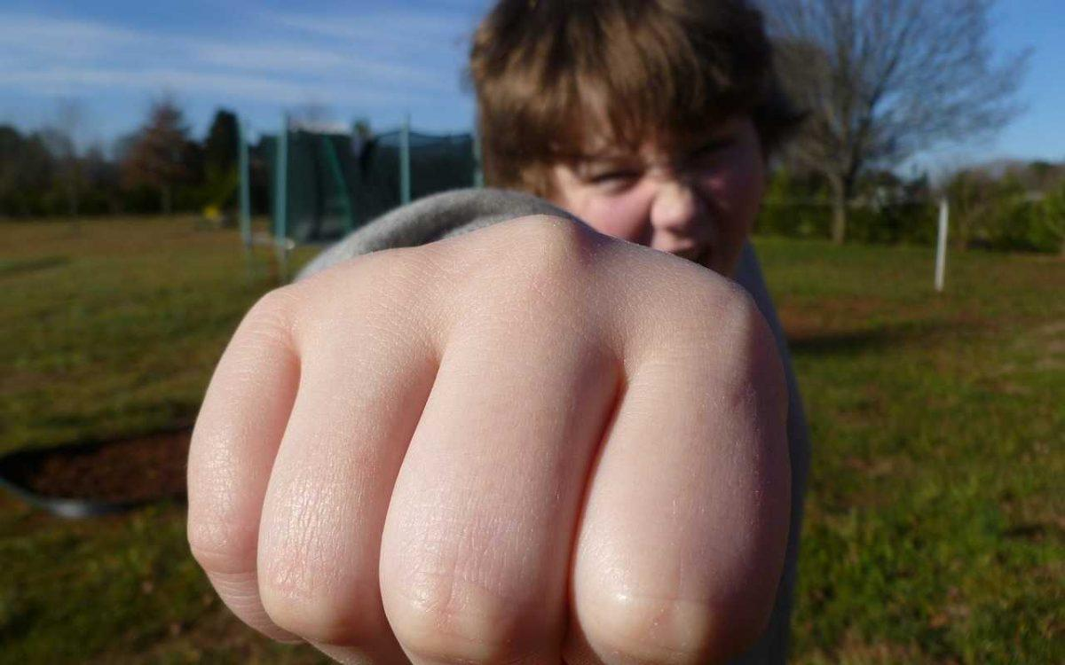 агресия в децата