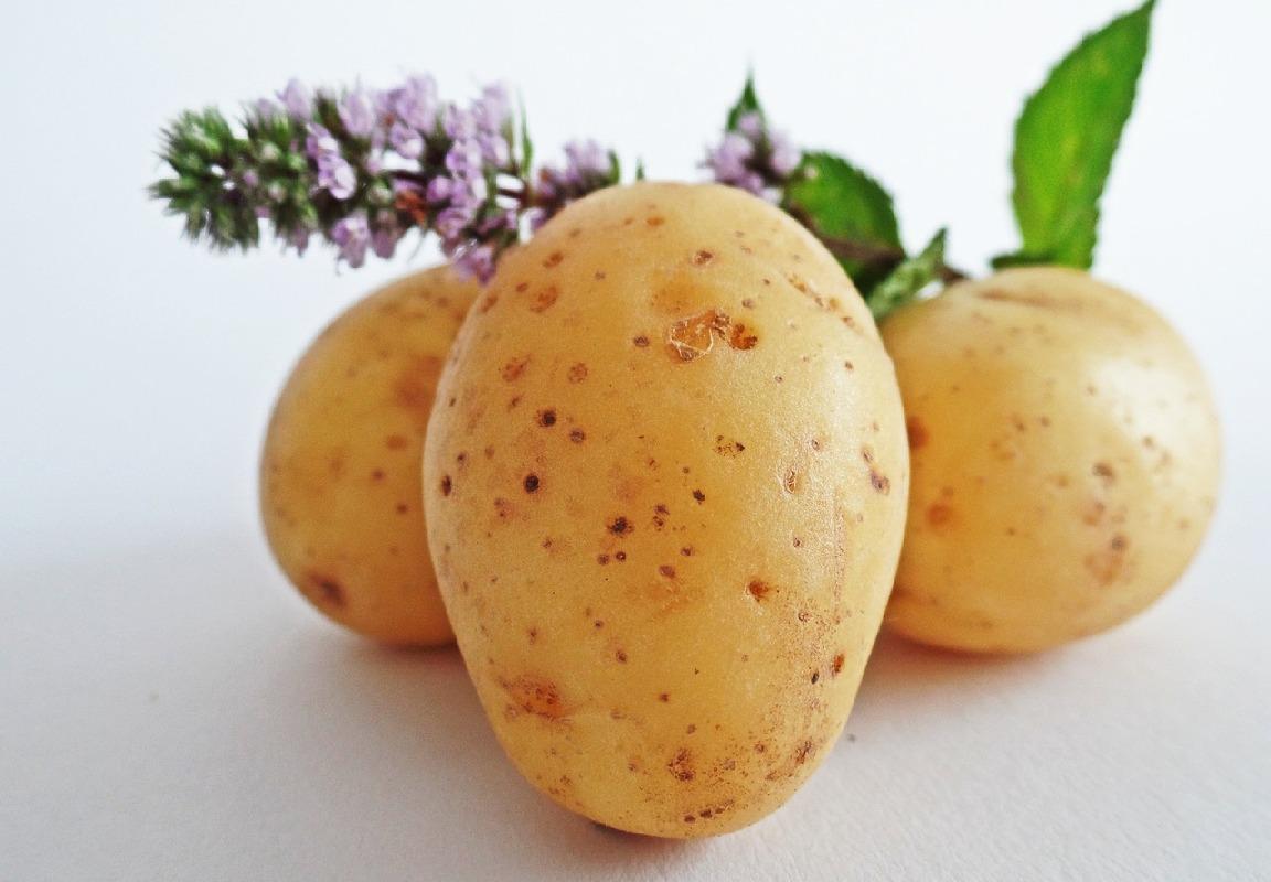 Компреси от картофи при болки в кръста