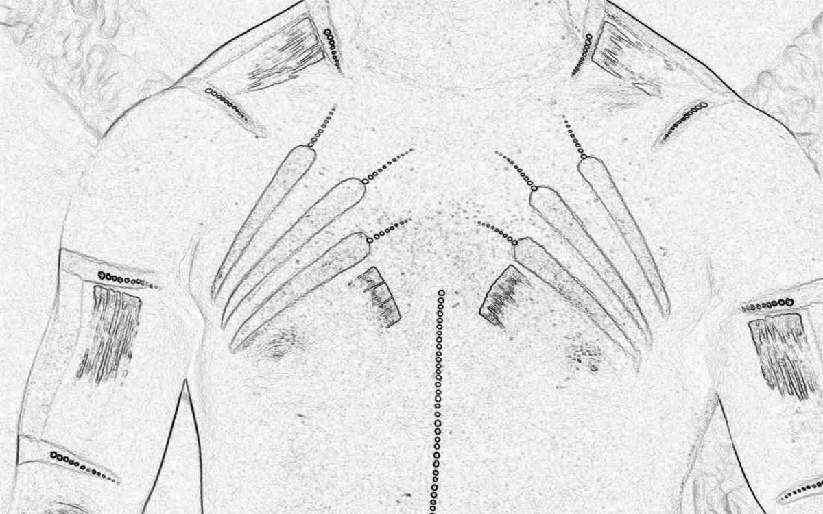 Съновник - гърди