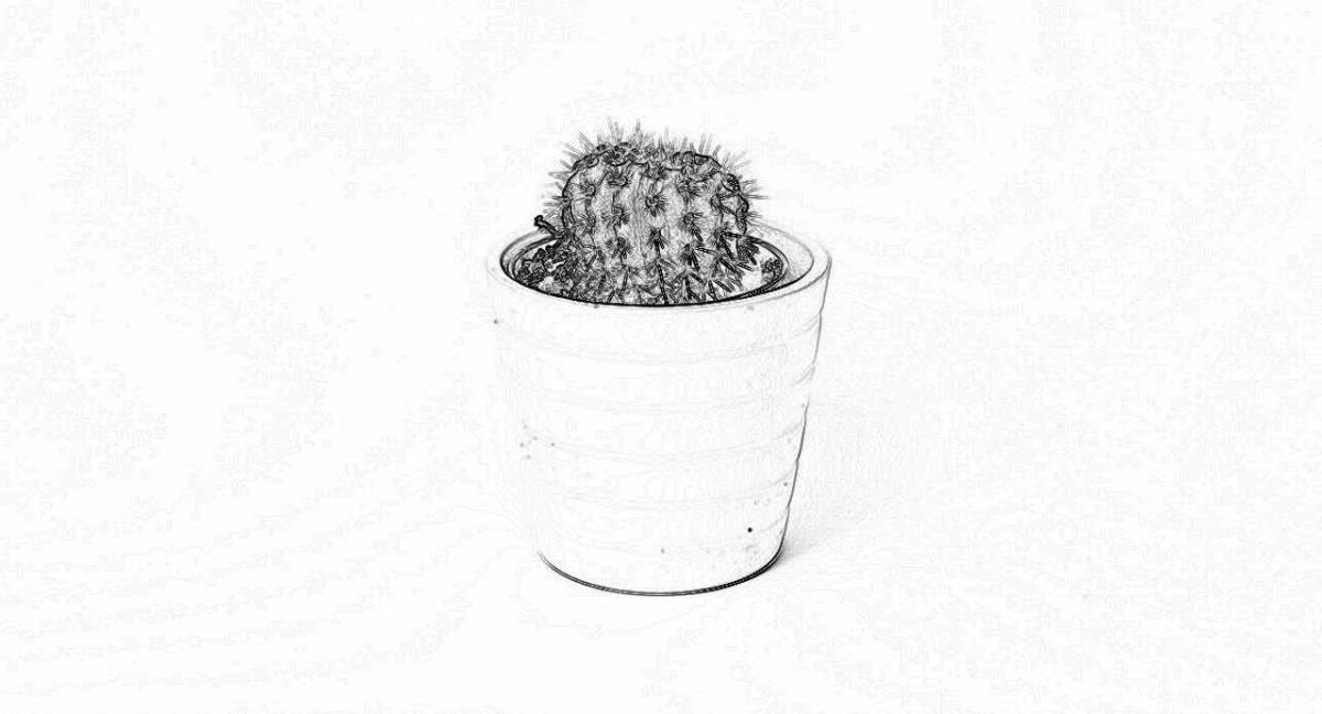 Съновник - кактус