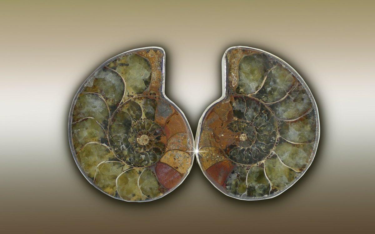 Камък амолит
